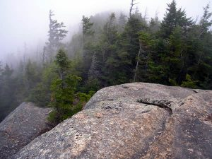 Foggy day outlook on Whiteface.