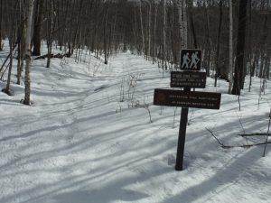 Hike or ski